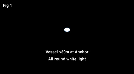 Single white light for vessel of less than 50m at anchor.